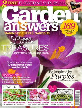 Garden Answers February 2017