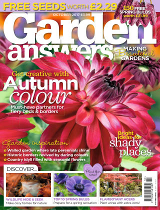 Garden Answers October 2017