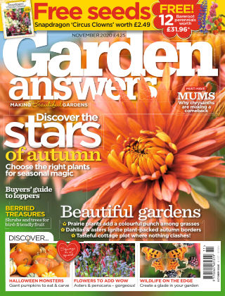 Garden Answers November 2020