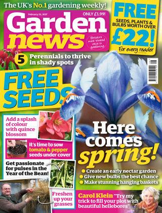 Garden News NR.08 2017