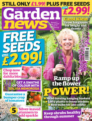 Garden News NR.26 2017