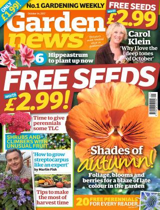 Garden News NR.41 2017