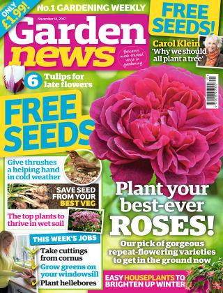 Garden News NR.45 2017