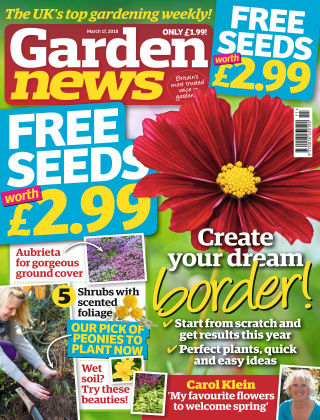 Garden News NR.11 2018