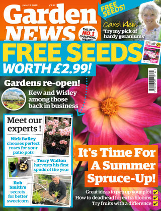 Garden News 13th June 2020