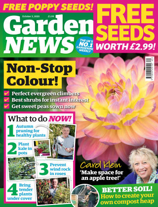 Garden News 3rd October 2020