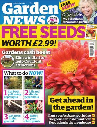 Garden News 31st October 2020