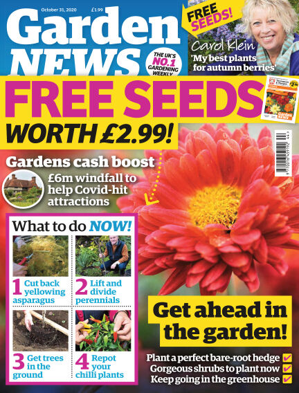 Garden News October 27, 2020 00:00