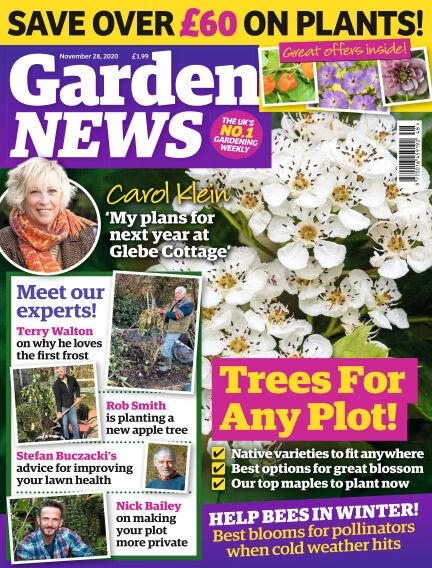 Garden News November 24, 2020 00:00