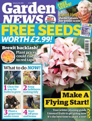 Garden News 30th January 2021