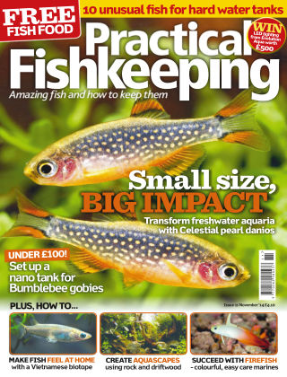 Practical Fishkeeping November 2014
