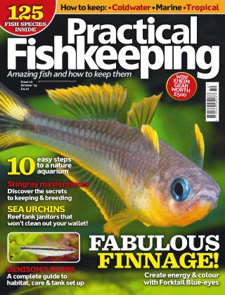 Practical Fishkeeping October 2014