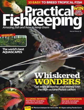 Practical Fishkeeping February 2015