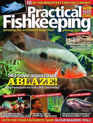 Practical Fishkeeping July 2015