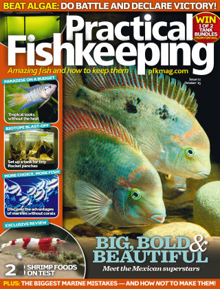 Practical Fishkeeping October 2015