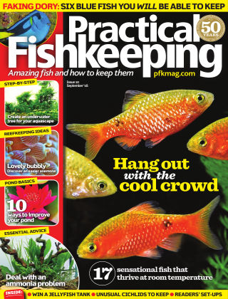 Practical Fishkeeping September 2016