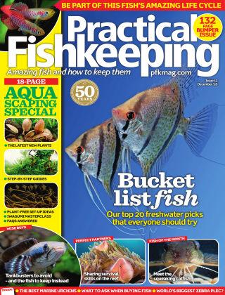 Practical Fishkeeping December 2016