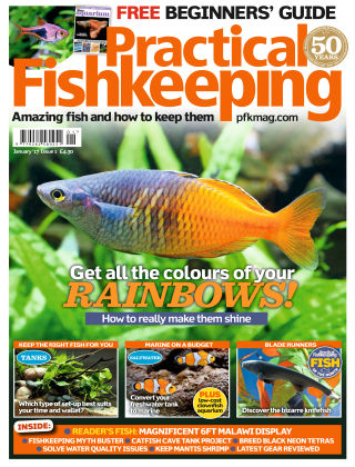 Practical Fishkeeping January 2017