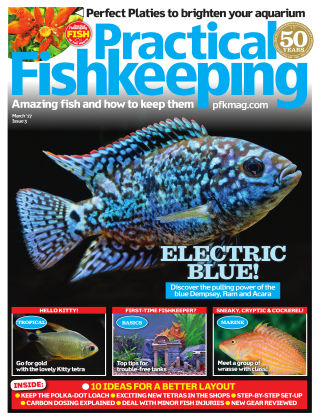 Practical Fishkeeping  March  2017