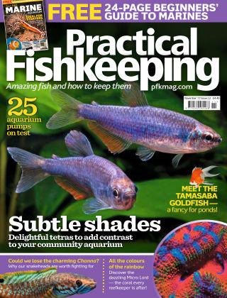 Practical Fishkeeping  November  2017