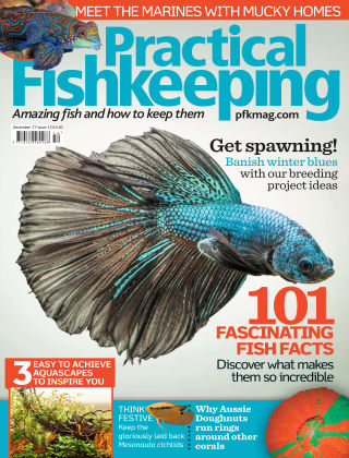 Practical Fishkeeping  December  2017