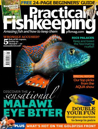 Practical Fishkeeping Jan 2018