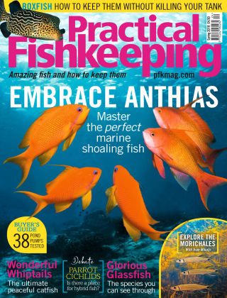 Practical Fishkeeping Spring Issue 2018