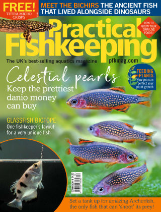 Practical Fishkeeping Oct 2018