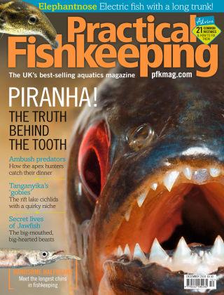 Practical Fishkeeping Dec 2018