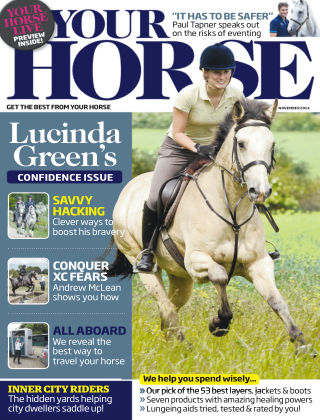 Your Horse November 2014