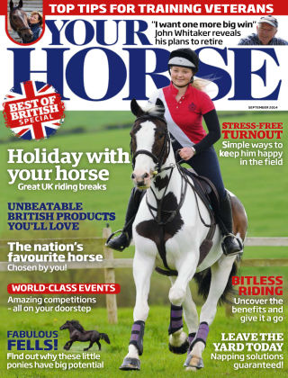 Your Horse September 2014