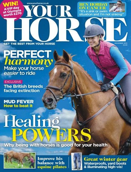 Your Horse October 22, 2015 00:00