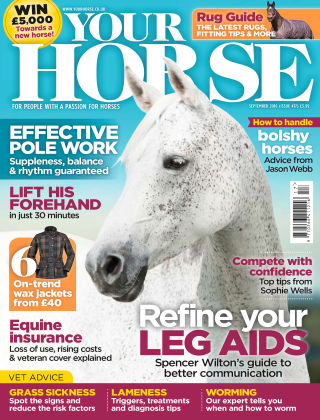 Your Horse September 2016