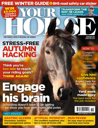 Your Horse November 2016