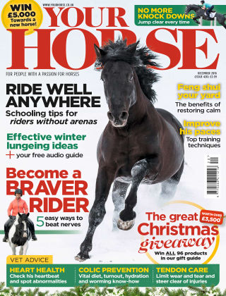 Your Horse December 2016