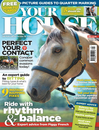 Your Horse Issue 429