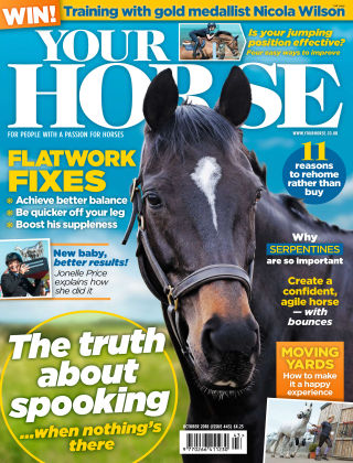 Your Horse Issue 443