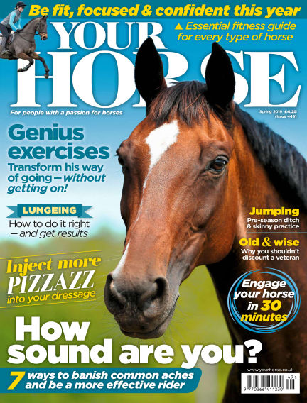Your Horse February 07, 2019 00:00