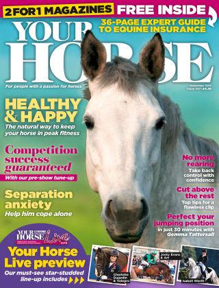 Your Horse Nov 2019
