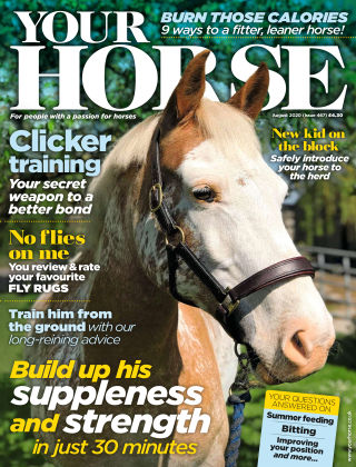 Your Horse August 2020