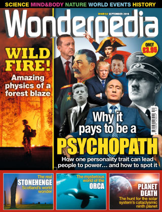 Wonderpedia September 2016