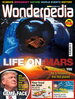 Wonderpedia October 2016