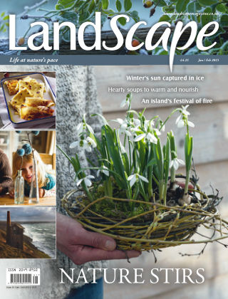 Landscape Jan / Feb 2015