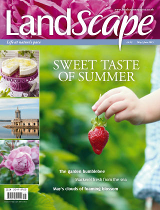 Landscape May/June 2015
