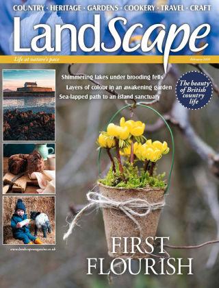 Landscape Feb 2020