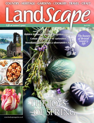 Landscape Apr 2020