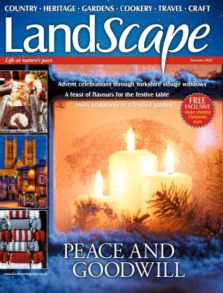 Landscape December 2020