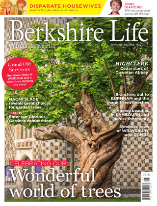 Berkshire Life May 2017