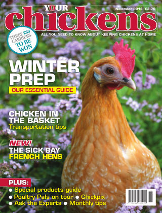 Your Chickens November 2014