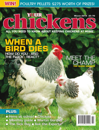 Your Chickens March 2015